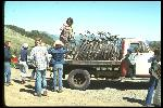 At the Azalea Hill drop off point for Repack. Bikes are unloaded from Fred Wolf's 1953 Chevrolet one ton flatbed truck. Side view of truck with lots of bikes. Little ZuZu Wolf on running board,that's his bike behind cab. Mark McCue of Berkeley Trailer's Union, BTU, unloads bikes. Circa 1977.